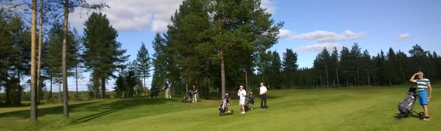 golf 1 1480x440 - Golf